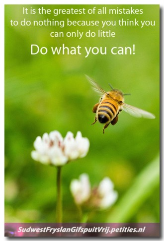 Do what you can 1